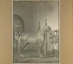 Deens paard
