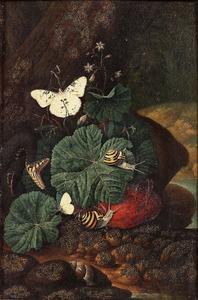 Bosstilleven met slang, slakken en vlinders