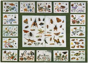 Studie van insecten met twee hagedissen en een salamander (middenpaneel) omgeven door een lijst met zestien kleinere studies van insecten, vruchten en slangen