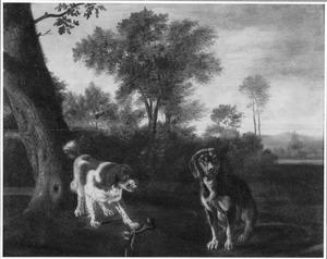 Twee honden met een bot in een landschap