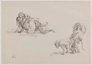 Studies van coïtus en parende apen