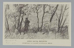 Schaapherder onder de bomen