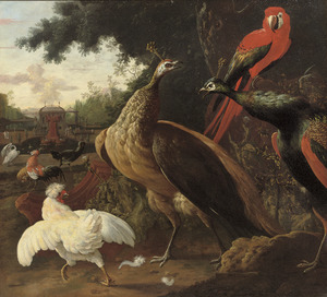 Twee pauwen, een Geelvleugelara en diverse andere vogels in een parklandschap
