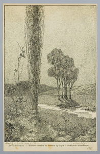 Bomen bij een beek