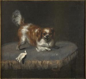 Portret van de hond Courtisane