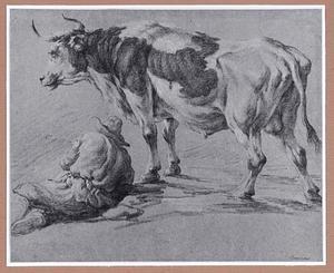 Staande stier en liggende boer