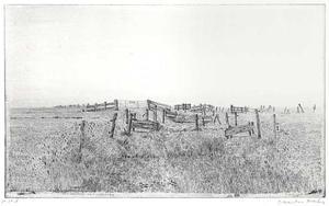 Polderlandschap met hekjes