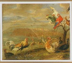 Pluimvee, papegaaien en andere vogels in een landschap, op de achtergrond een stad aan een baai