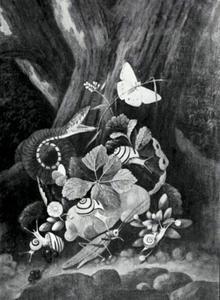 Bosstilleven met een slang, sprinkhaan, slakken en vlinders