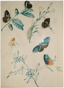 Tak met blauwe bloemen, tuberoos en eikentak met eikels; zes vlinders, rups en insect