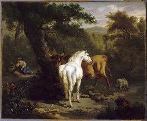 Landschap met wit paard