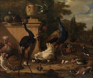 Kraanvogel, pauw, kippen en eenden in een formele tuin