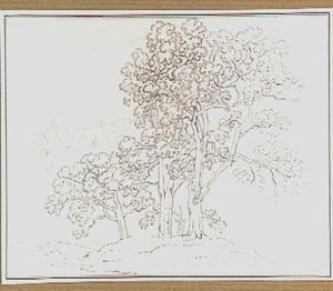 Heuvellandschap met loofbomen in de omgeving van Belmonte