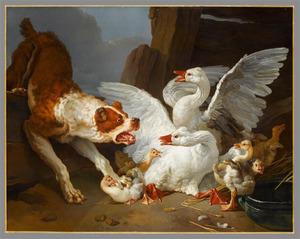 Hond stort zich op ganzen