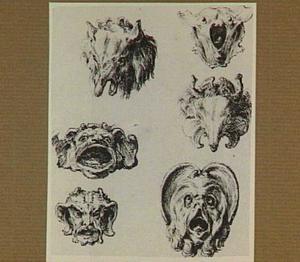 Studie van groteske dierkoppen