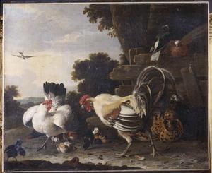 Hoenders en duiven in een landschap
