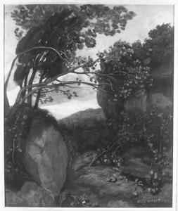Rochers dans les broussailles, près du Lac de Nemi