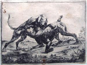 Twee vechtende Mastiffs