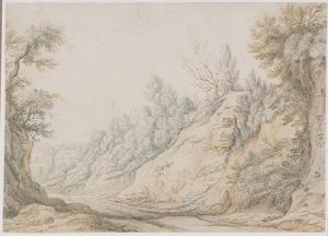 Rotslandschap met landweg en bomen