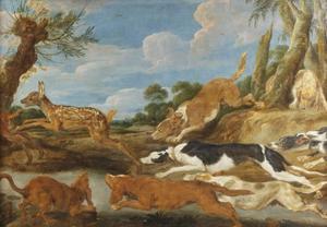 Jonge herten opgejaagd door een meute jachthonden