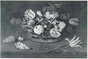 Bloemen in een mand, schelpen, druiven en een tulp op een stenen plint