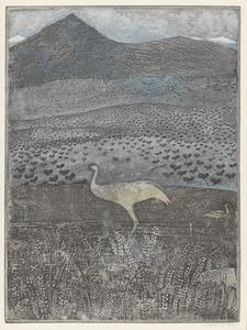 Landschap met kraanvogels in Extremadura