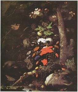Veldbloemen in een bos