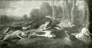 Wildzwijnjacht met honden