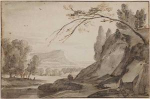 Rotsachtig landschap met een overhangende boom