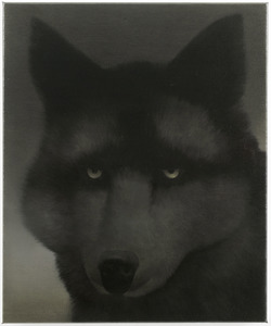 Untitled (canis)