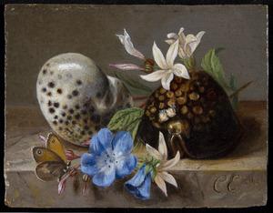 Stilleven met bloemen en schelpen op een marmeren blad