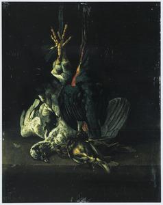 Stilleven van dode vogels