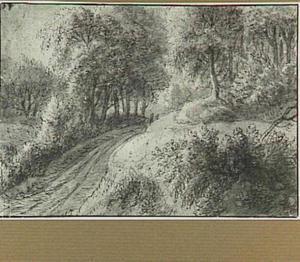 Boslandschap met weg
