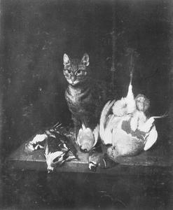 Kat en dood gevogelte