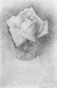 Rose in a glass