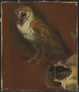 Studie van een uil en een aap