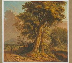 Landschap met wandelaars op een zandweg