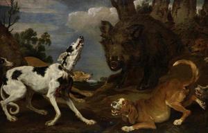 Honden bedreigen een wild zwijn
