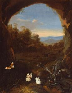 Distel met vlinders en een hagedis bij de ingang van een grot