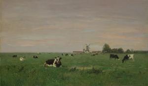 Nederlandse platteland (koeien op de wei)