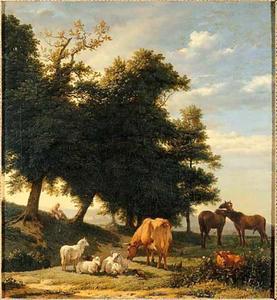 Schapen, koeien en paarden in de wei