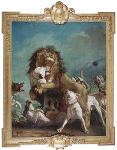Afrikaanse leeuw aangevallen door vechthonden