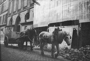 Trekpaarden te Parijs