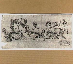 Steigerende paarden en geit