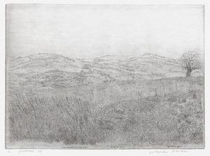 Landschap in de Provence