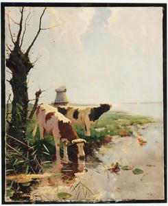 Zomerlandschap, weide met koeien