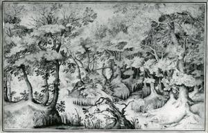 Boslandschap met een boomstronk