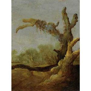 Dode boom in een boslandschap
