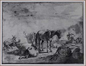 Herder met vee