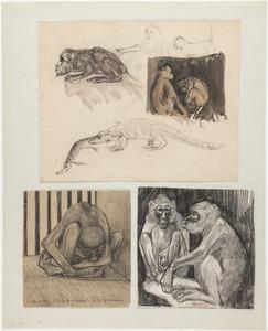 Drie studies van apen